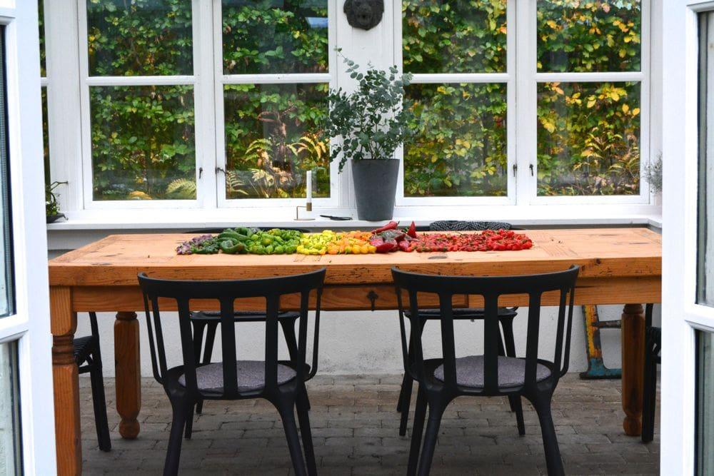 orangeriet-goeres-klar-til-vinteren1
